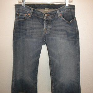Lucky Brand Size 6/28 Darna Sweet Dream Jean Short